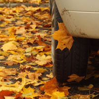 Columbia Car Accident Lawyers discuss safe driving to avoid autumn car accidents.